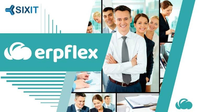 O que é ERPFlex